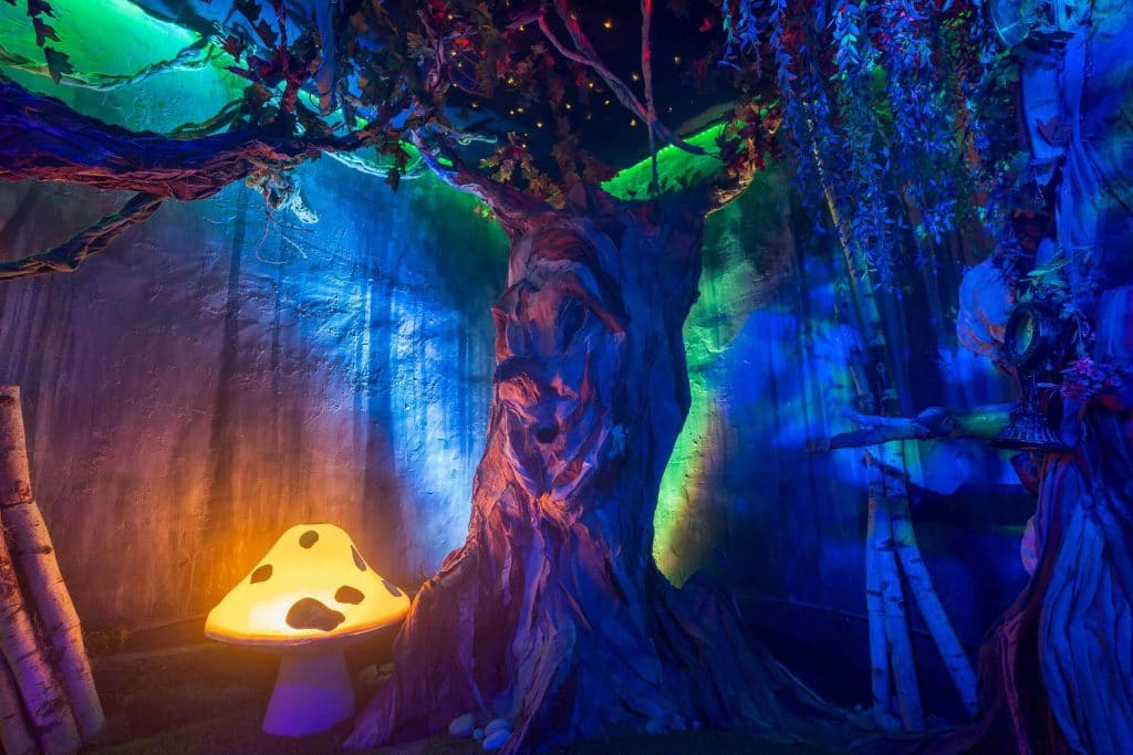 Magical forest Escape Room