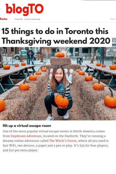 BlogTo Article Preview